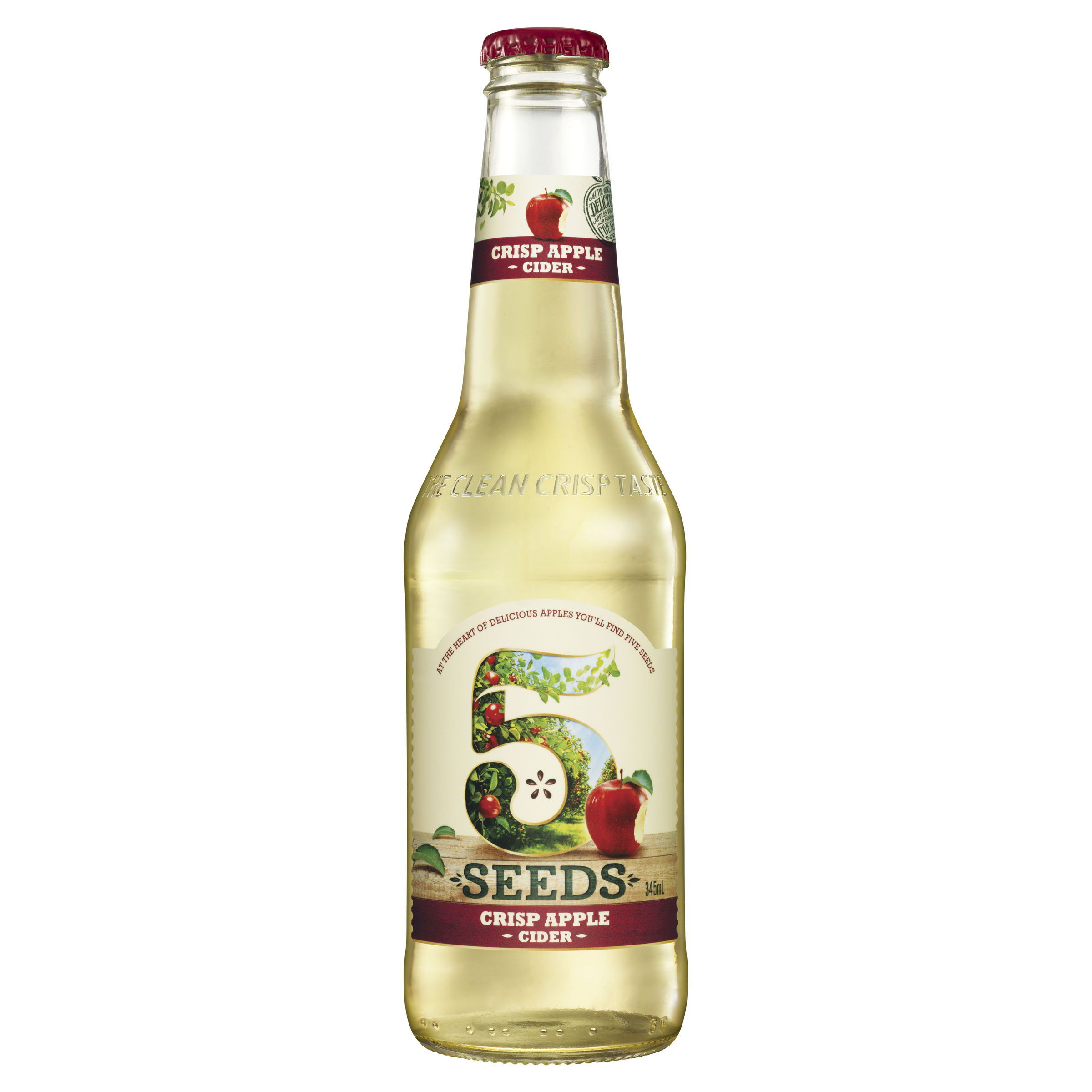 TED 5 SEEDS CIDER