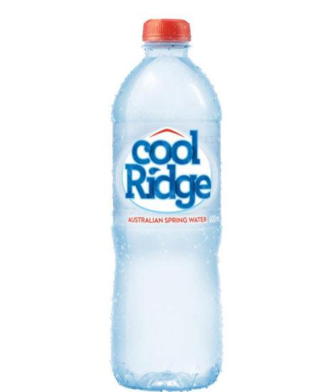 COOL RIDGE SPRING WATER PET